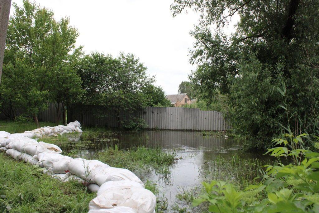 В Клещеевке Бахмутского района затопило огороды