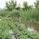 Где-то есть, но мало, где-то – нет вообще. Что не так с ливневой канализацией в Бахмутском районе