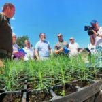 Из теплицы – в дикую природу: оборудование для восстановления лесов Донбасса готово почти на треть (ФОТО)