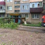 У Дружківці знайшли мертвим прибитого деревом чоловіка. Є й інші постраждалі від негоди