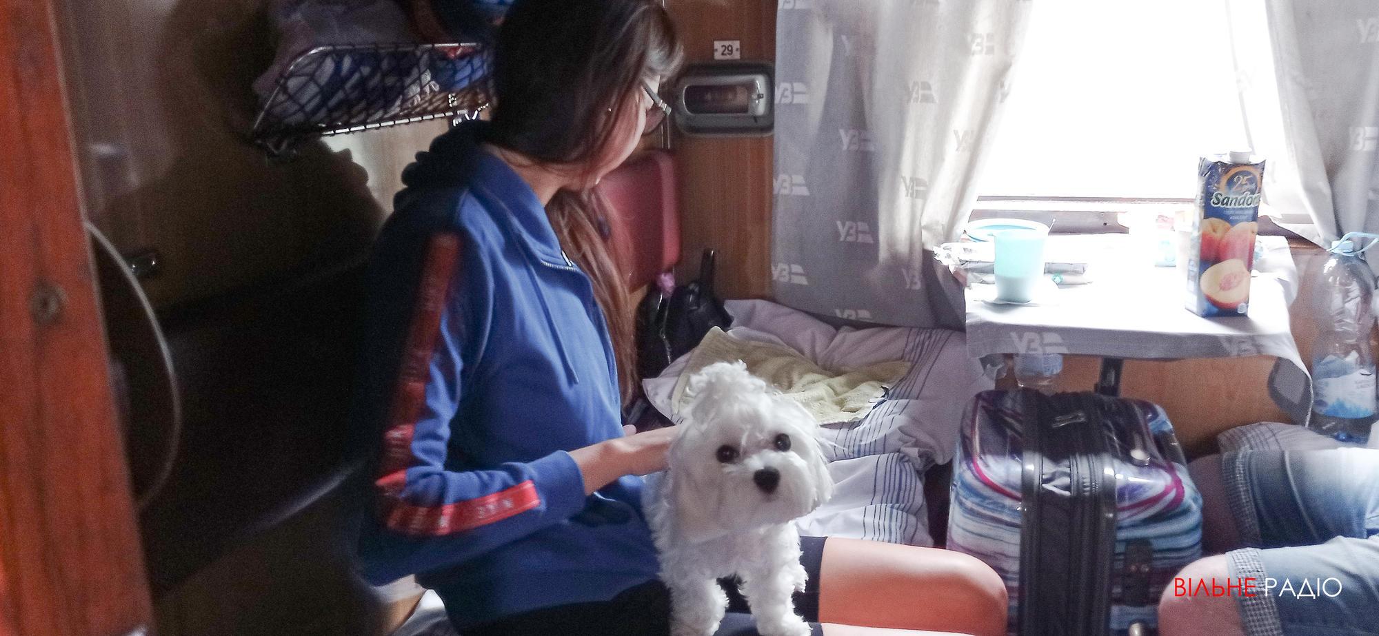 пасажир з собакою у потязі