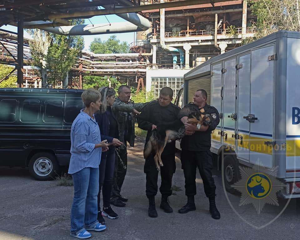 У Сєвєродонецьку зоозахисники визволили із заводської труби собаку, яка прожила в ній 6 років